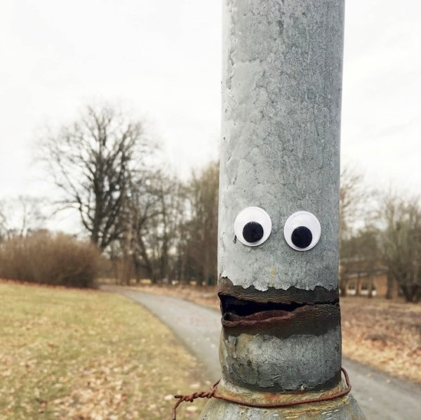 guy-goes-around-adding-googly-eyes-to-objects-is-pleasantly-enjoyable-27-photos-215.jpg